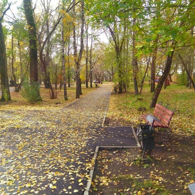 #bergorod парк озолотился)