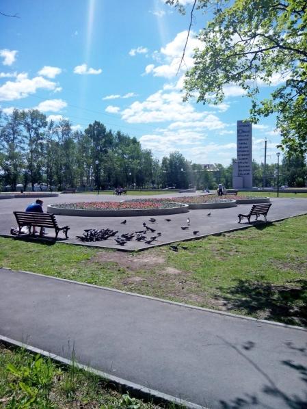 Солнечный день в парке