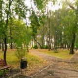 Березниковский парк осенью